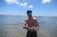 Baby Bonefish!